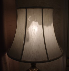 lampshade, liner, replace, repair, restore, shade